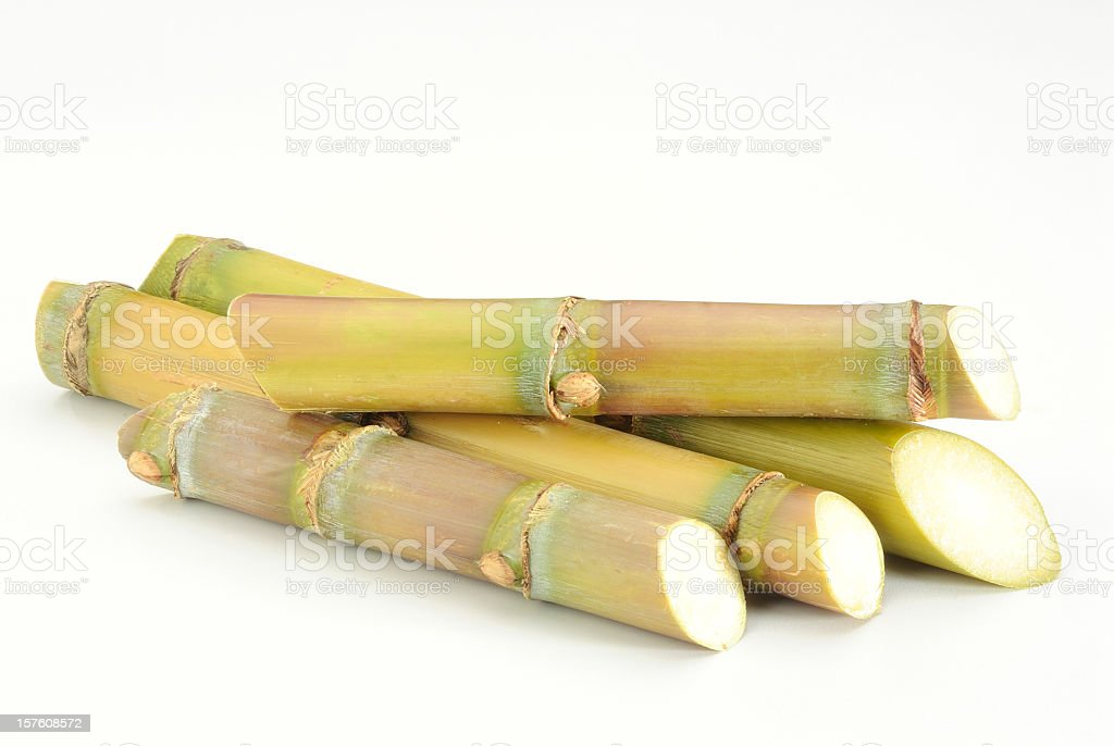 Sugar cane sticks isolated on white backdrop stock photo