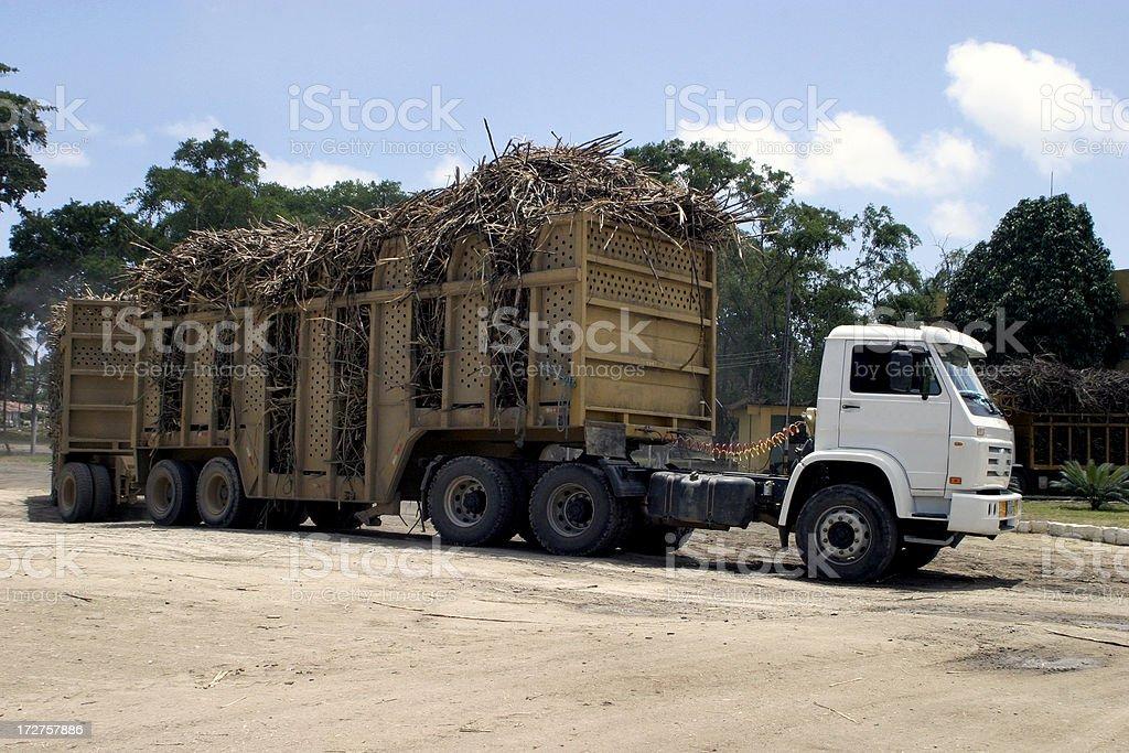 Sugar canne truck stock photo