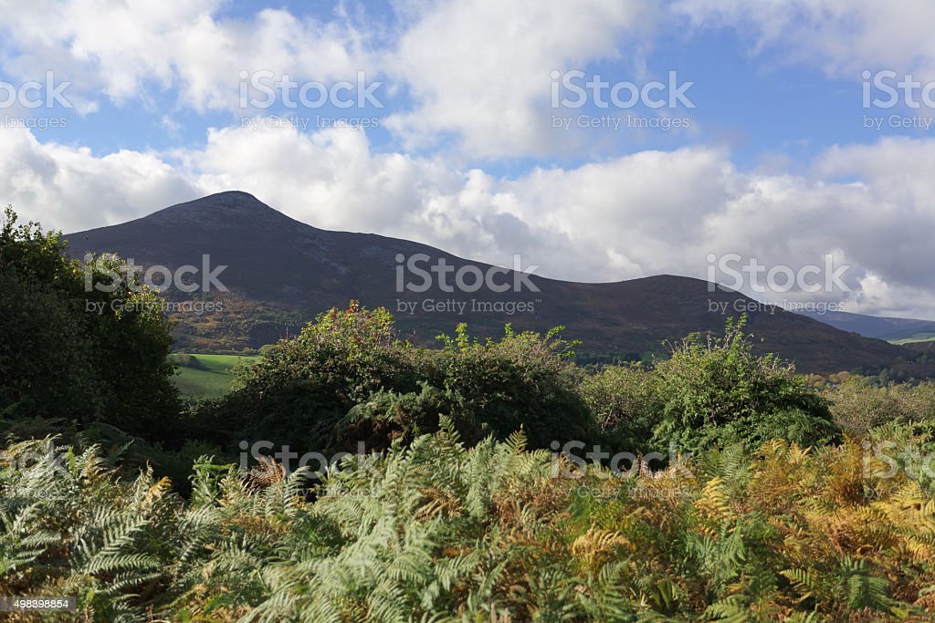 Sugar Loaf royalty-free stock photo