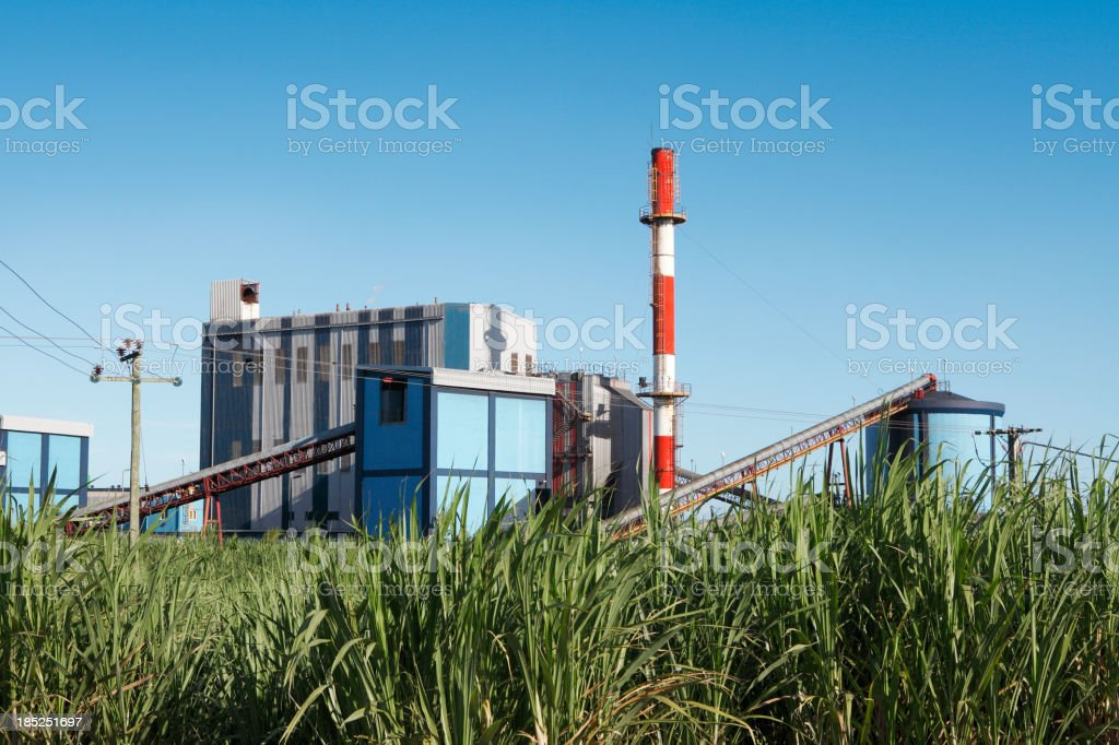 Sugar mill and sugarcane field stock photo