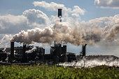 Sugar Plant, Louisiana