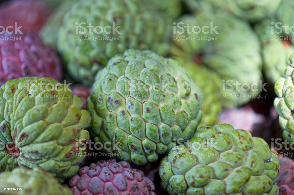 Sugar-apples on a market stall stock photo