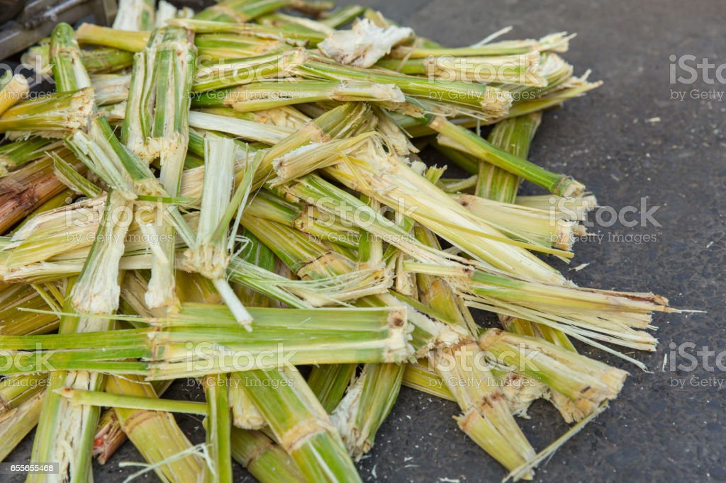 Sugarcane bagasse, nature fiber recycle for biofuel pulp and building materials. stock photo