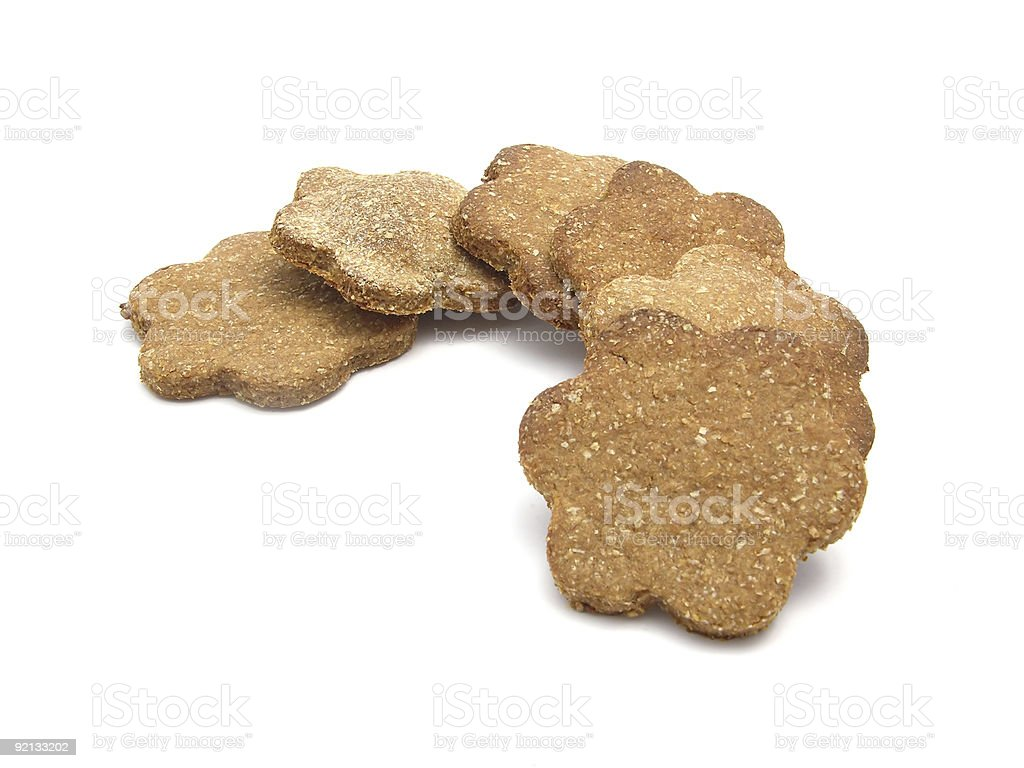 Sugary dog cookies flower-shaped royalty-free stock photo