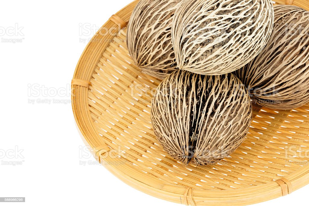 Suicide tree seed with Webbed Bamboo Tray on white background. stock photo