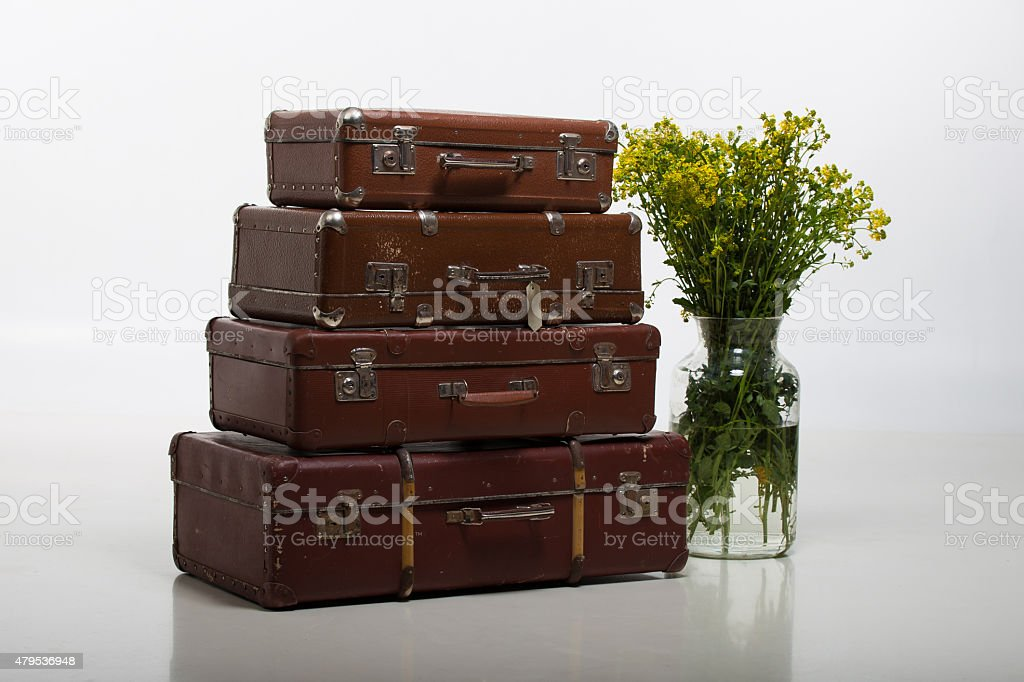 Suitcases and flowers stock photo