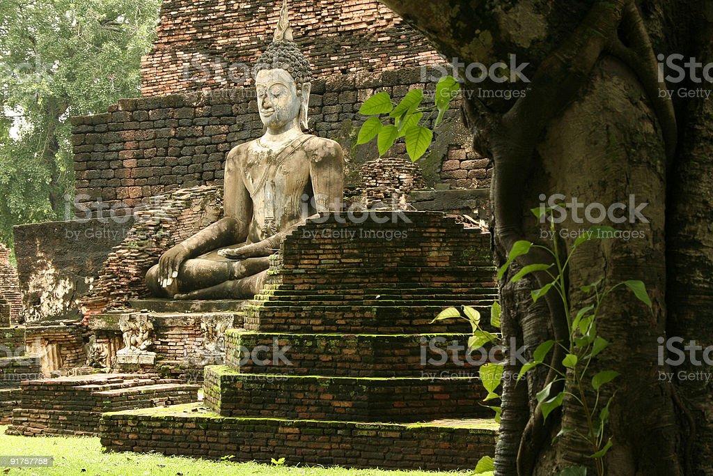 Sukhothai jungle temple ruins buddha stock photo