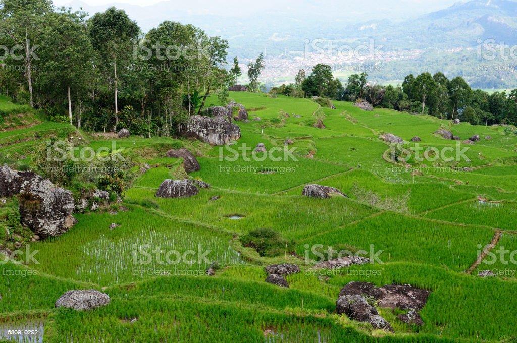 Sulawesi landscape in Indonesia stock photo