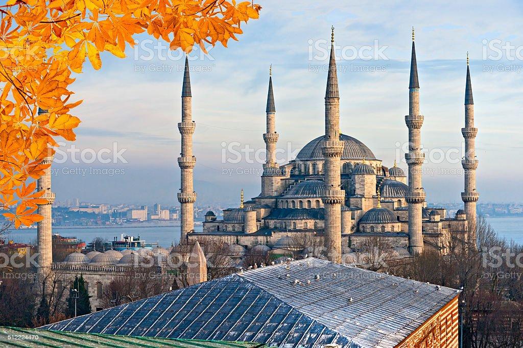 Sultanahmet's Blue Mosque in autumn, Istambul. stock photo
