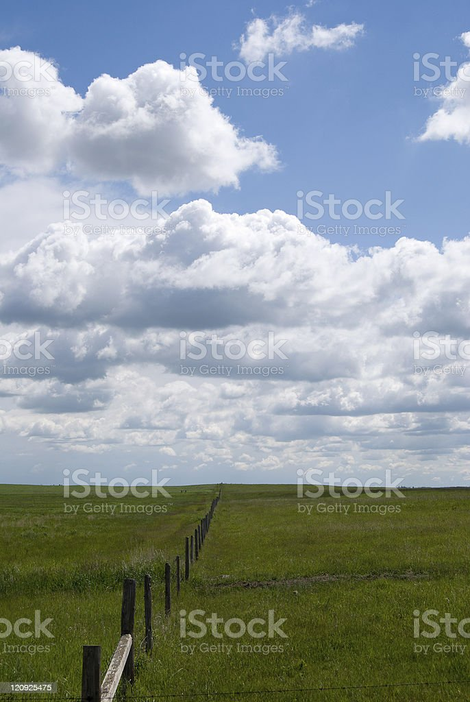 Sumer Field and Fence royalty-free stock photo