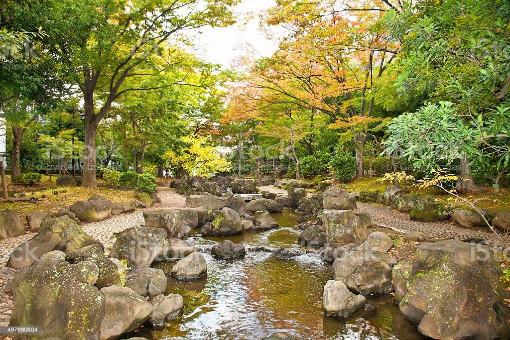 Sumida public park  ,Tokyo, Japan. stock photo