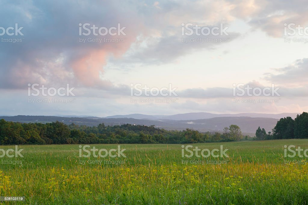 Summer Afternoon Hayfield stock photo