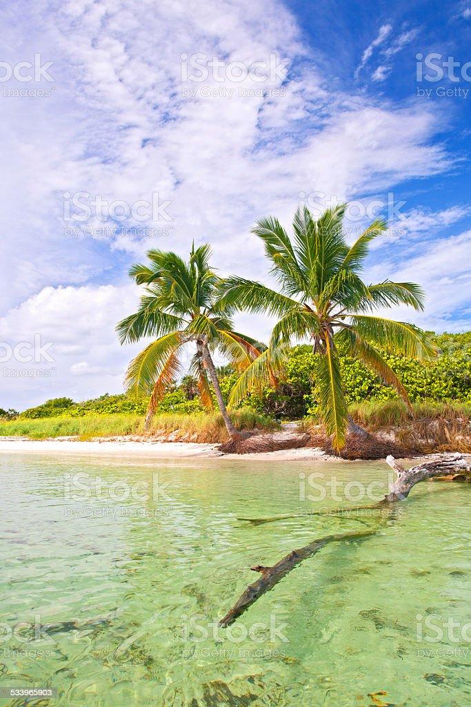 Summer at a tropical beach paradise in Florida stock photo