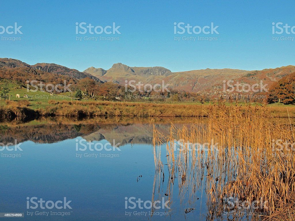 Summer at Elterwater lake stock photo