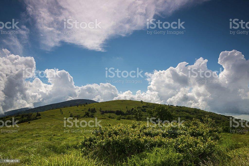 Summer at Roan Bald royalty-free stock photo