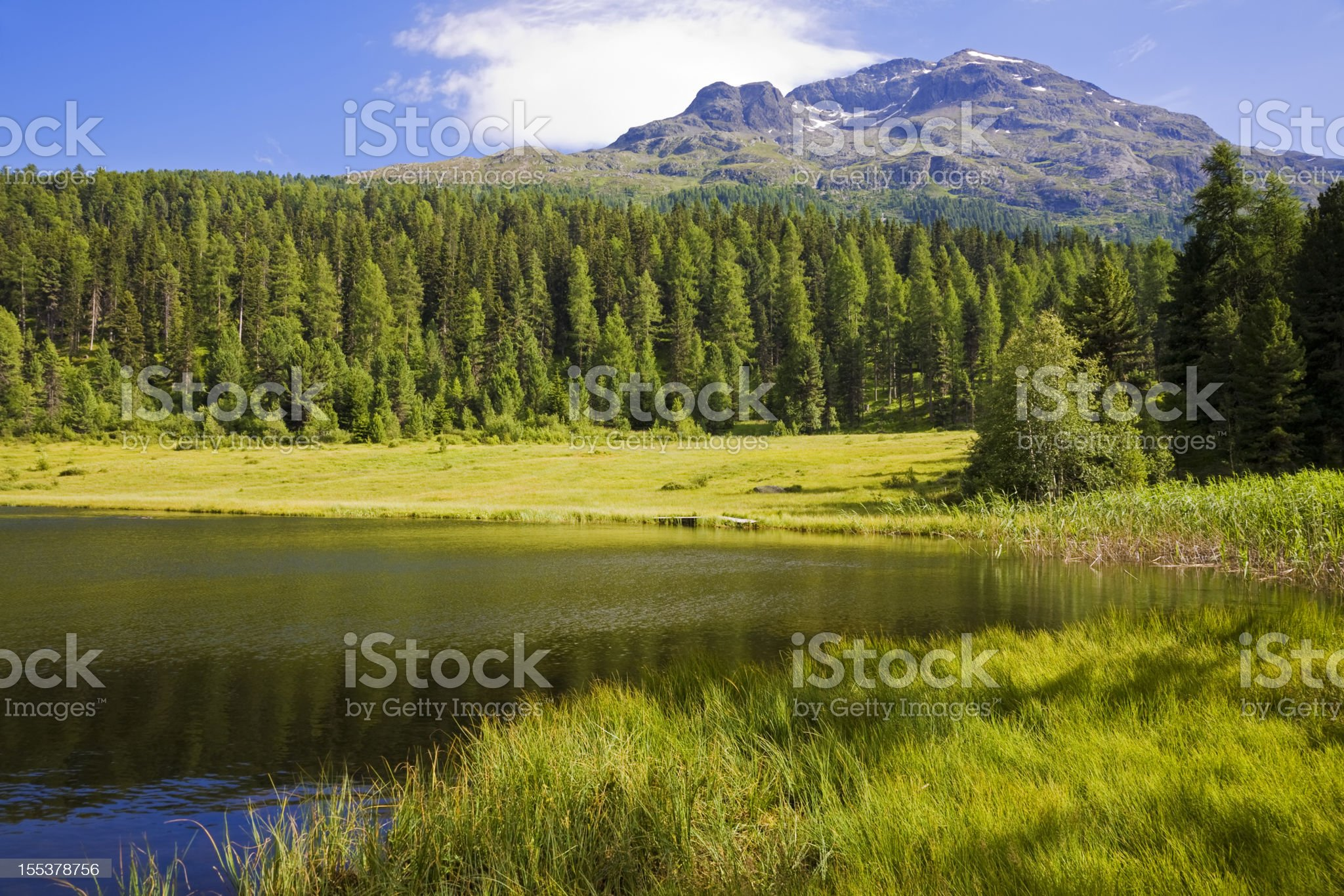 Summer at the mountain lake royalty-free stock photo