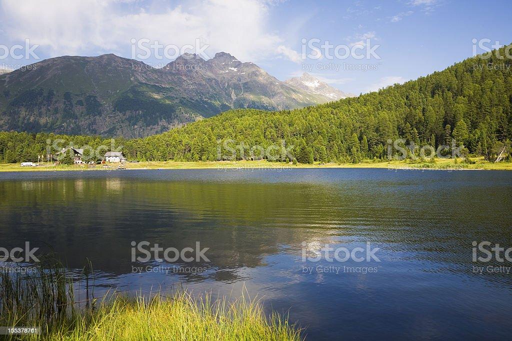 Summer at the mountain lake royalty-free stock photo