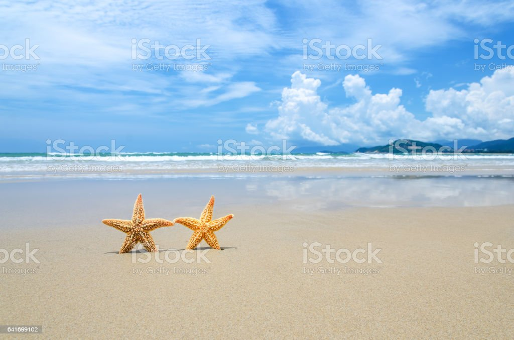 Summer beach holidays concept stock photo