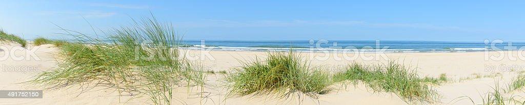 Summer beach panorama stock photo