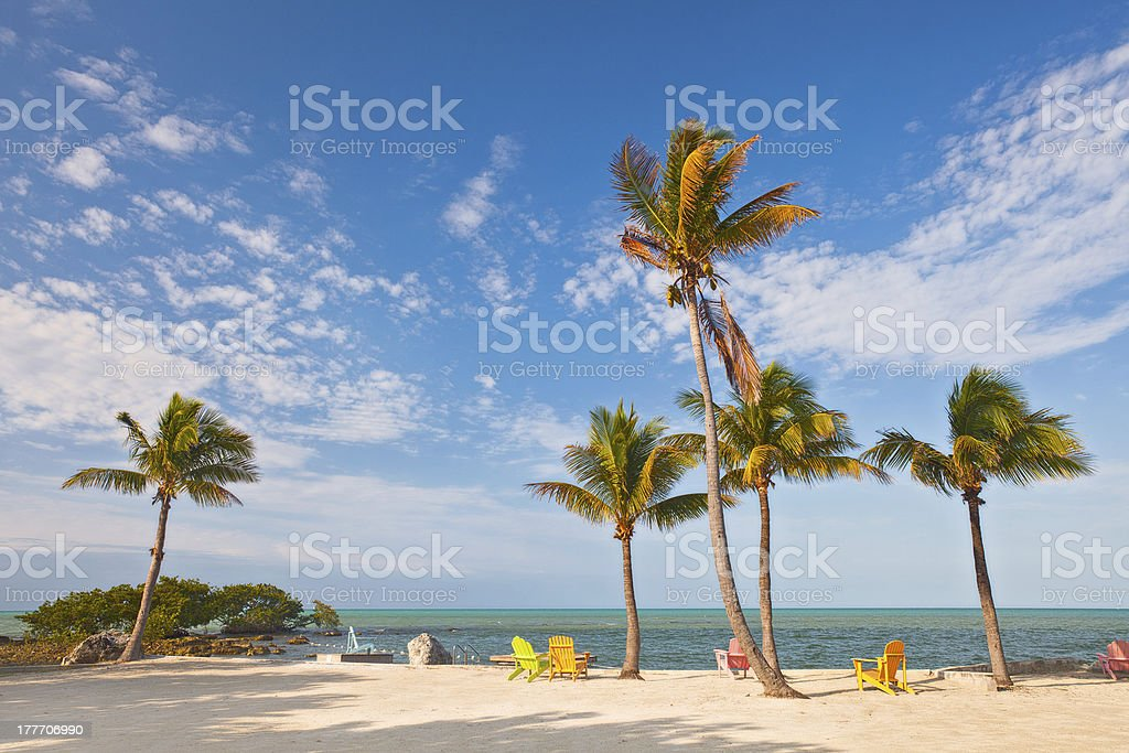 Summer beach scene with lounge chairs and palm trees stock photo