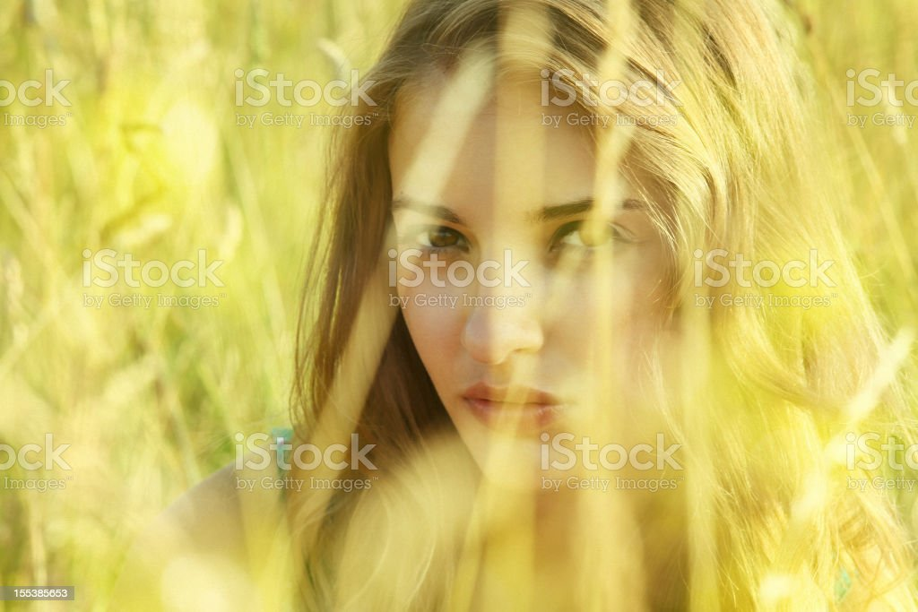 summer beauty peeking out from the grass royalty-free stock photo