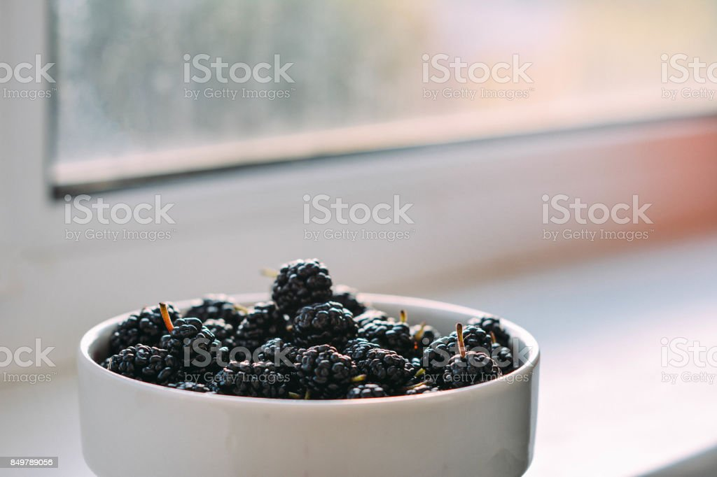 Summer berries in a pialat on colour background stock photo
