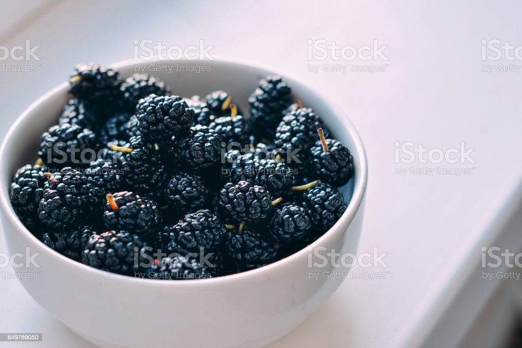 Summer berries in a pialat on white background stock photo