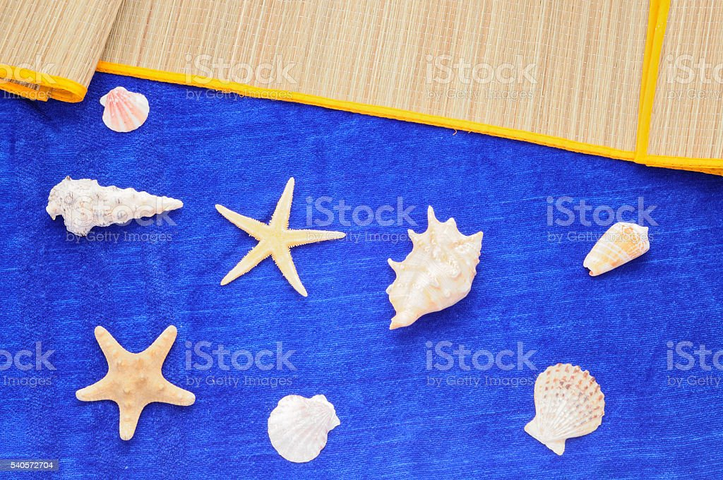 Summer blue background with seashells, starfish stock photo