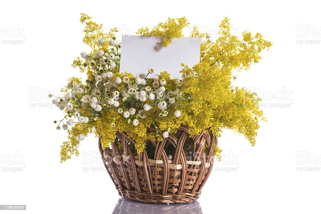 Summer bouquet of wild flowers royalty-free stock photo