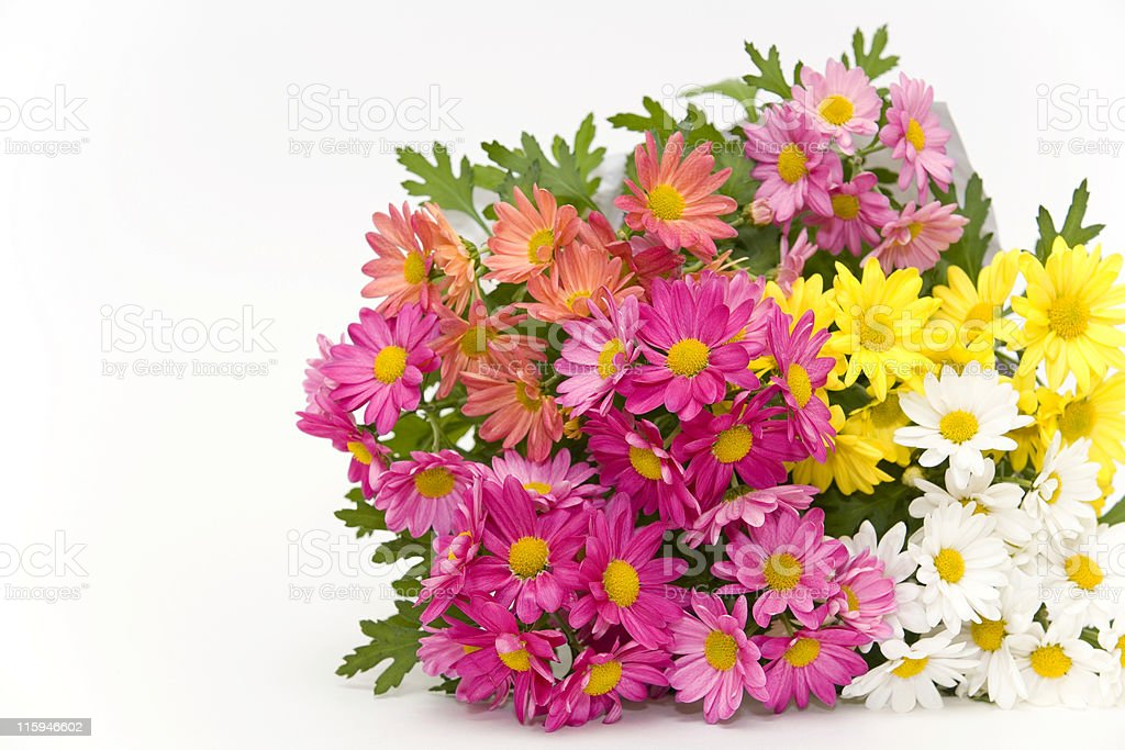 Summer Bouquet royalty-free stock photo