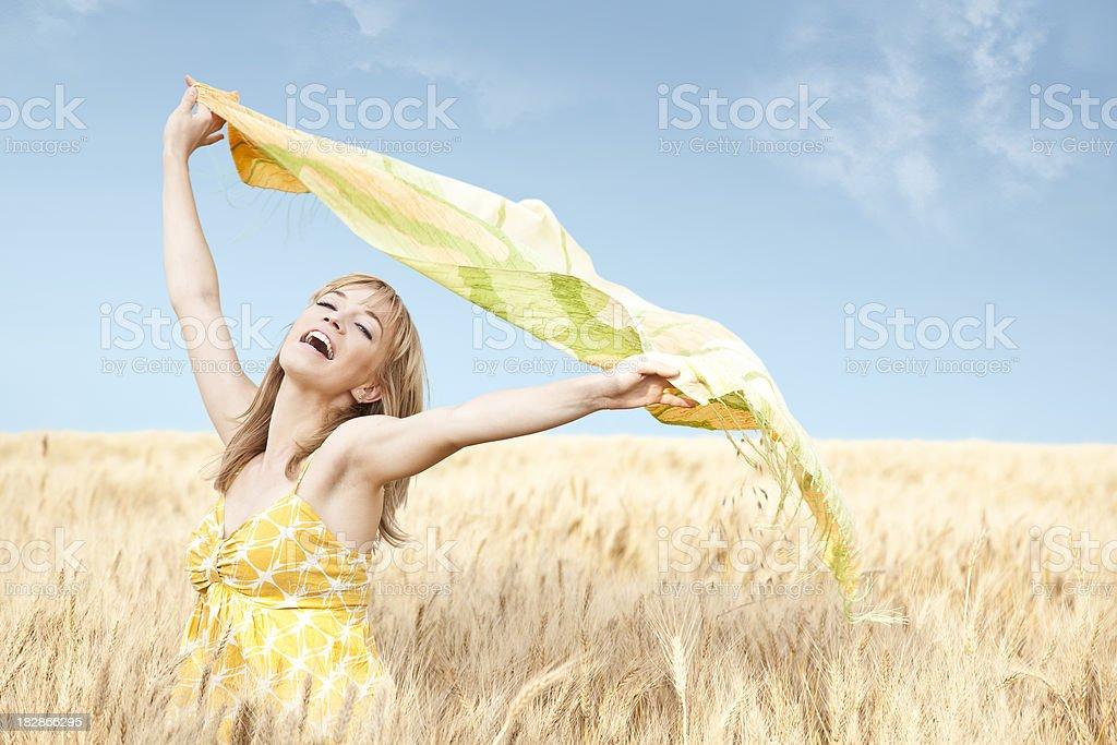 Summer breeze in wheat field stock photo