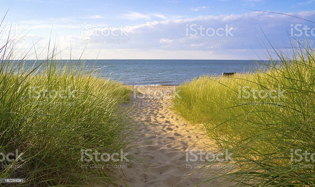 Summer Breeze stock photo