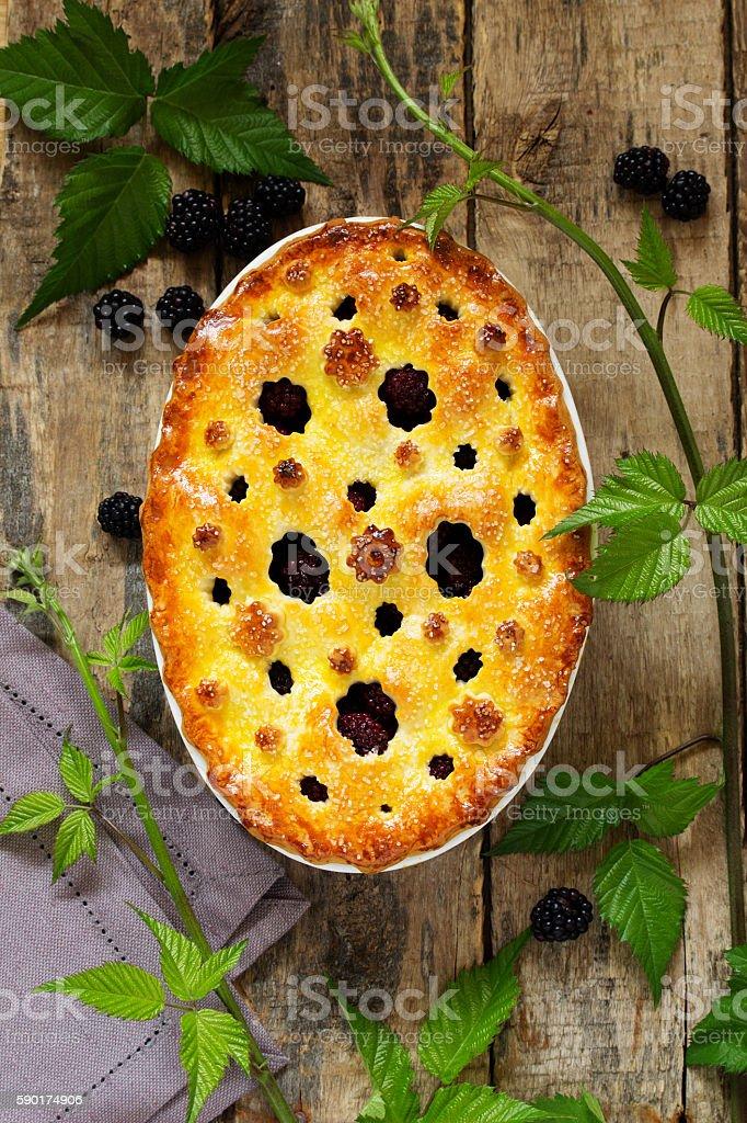 Summer cake with blackberries. stock photo