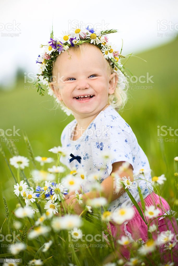 summer came royalty-free stock photo