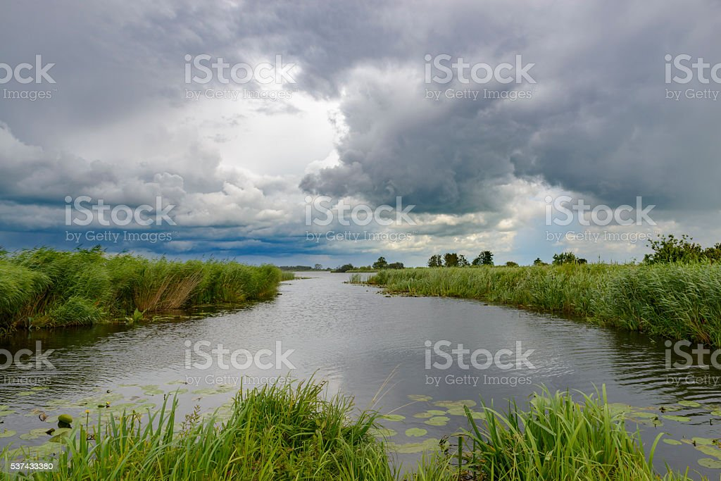 Summer clouds in a nature reserve stock photo