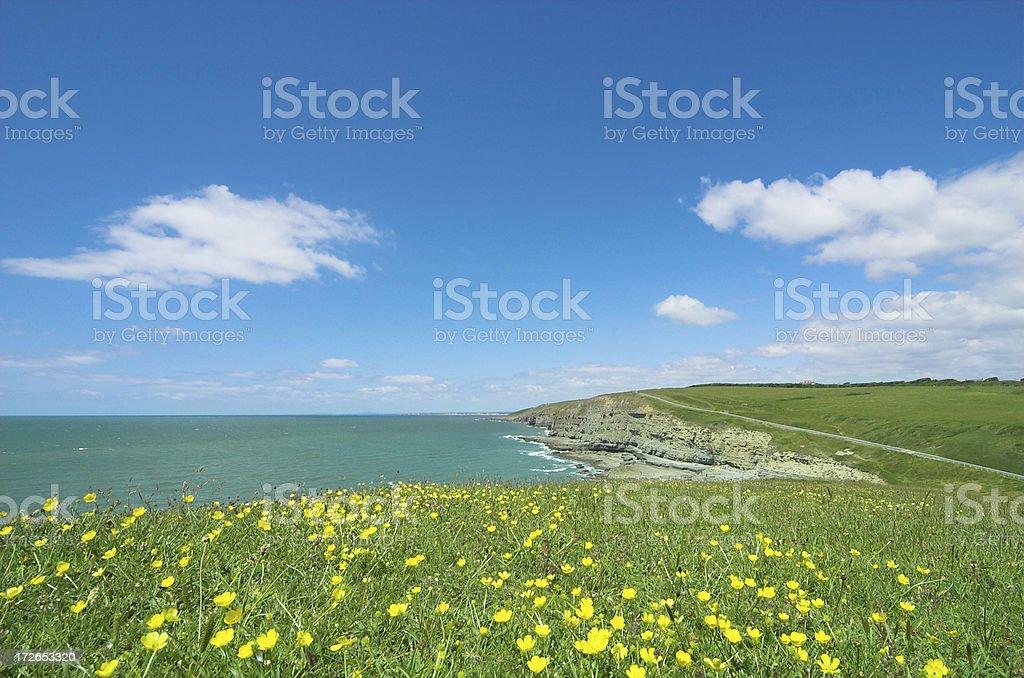 summer coastal scene stock photo