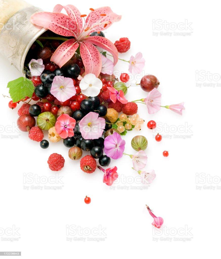 Summer cornucopia stock photo