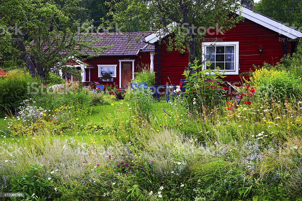 Summer cottage at the lake with wild flowers garden surrounding stock photo