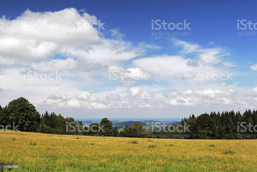 Summer country royalty-free stock photo
