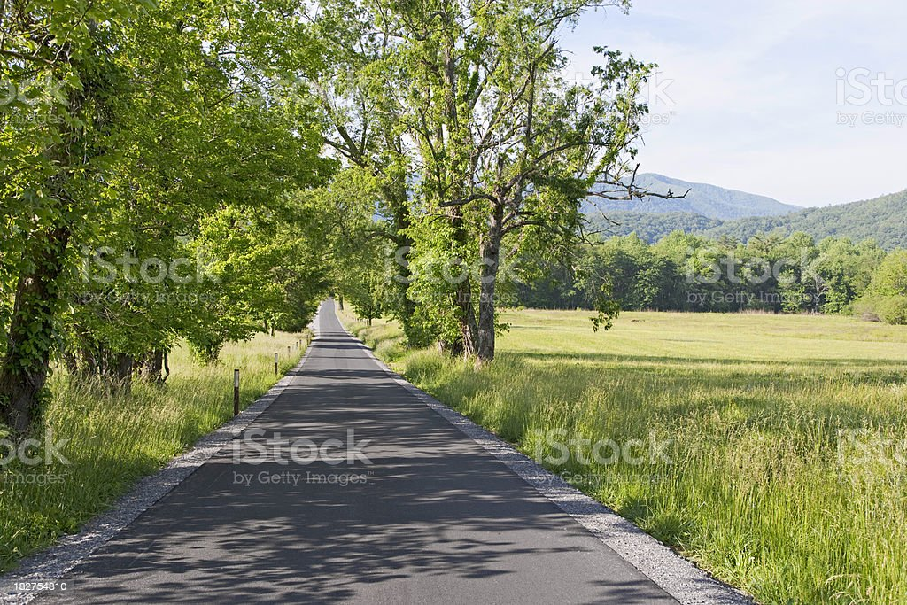 Summer country road in the Smoky  Mountains royalty-free stock photo