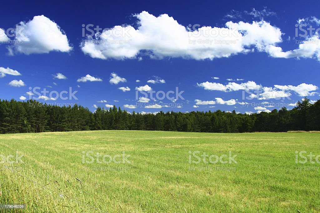 summer country view royalty-free stock photo