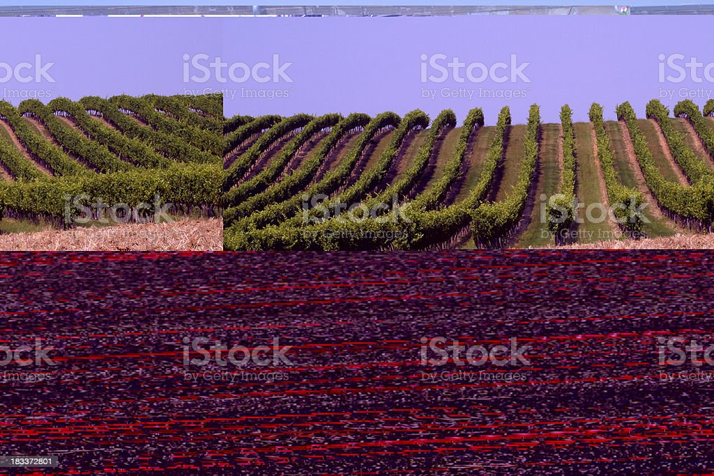 Summer countryside royalty-free stock photo