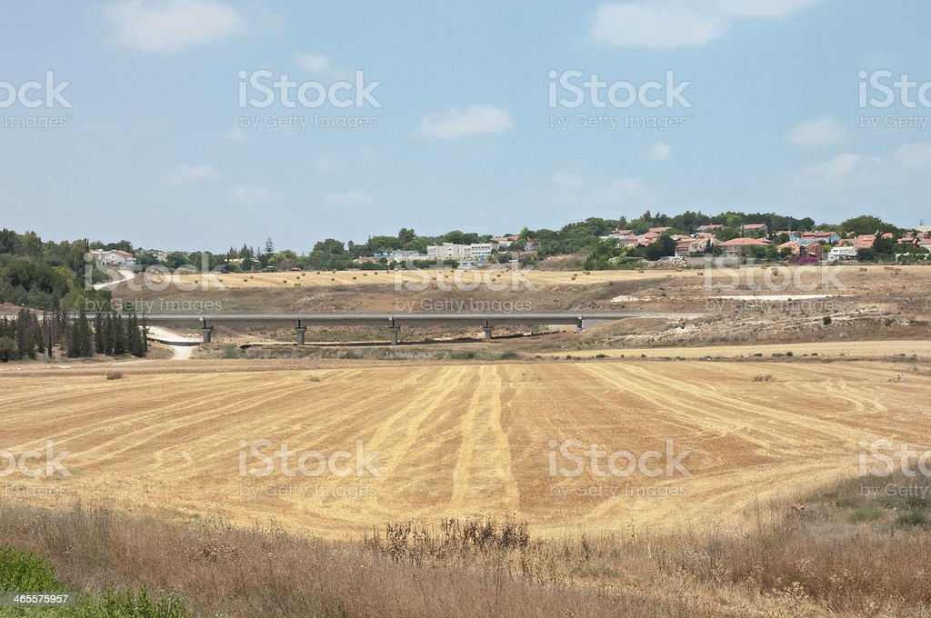 Summer day in the countryside. royalty-free stock photo