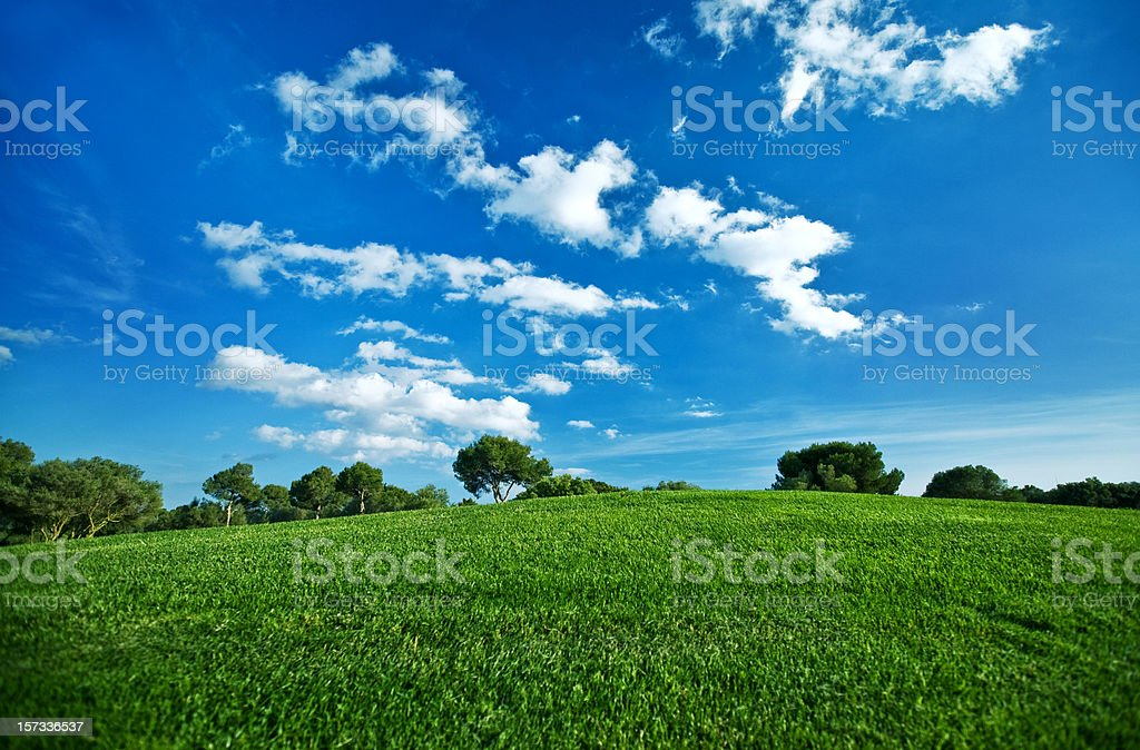 Summer Day royalty-free stock photo