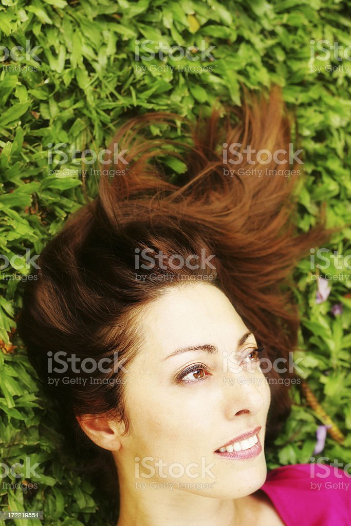 Summer Dreams royalty-free stock photo