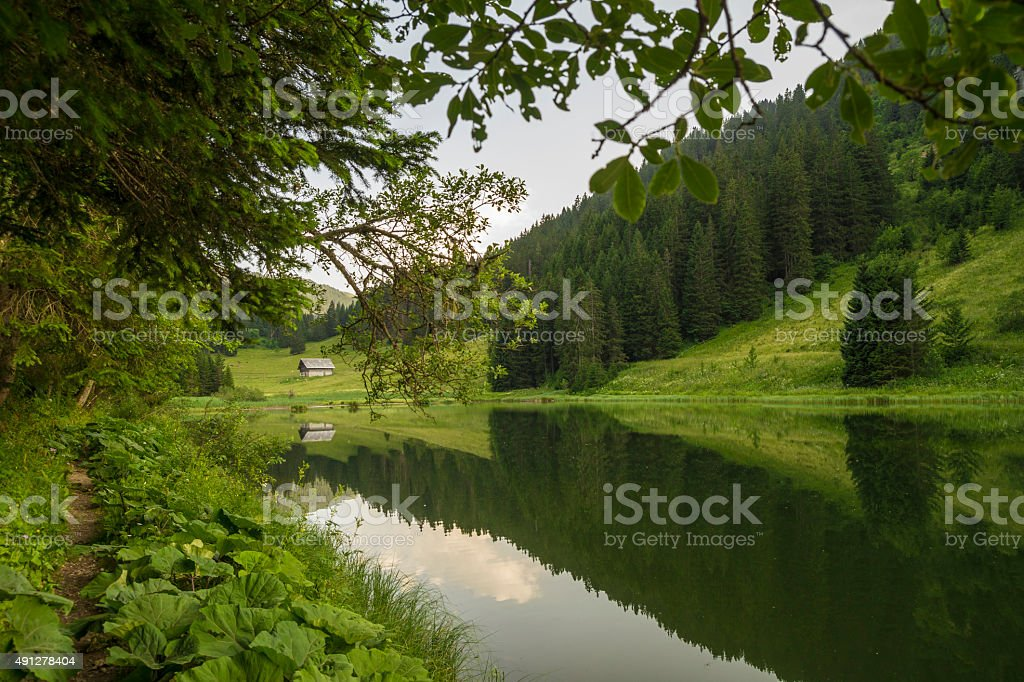Summer evening at Lake Morgins , Switzerland stock photo