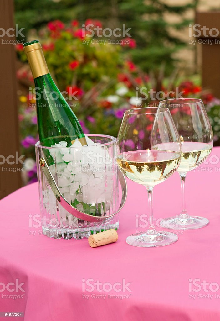 Summer Evening Celebration royalty-free stock photo