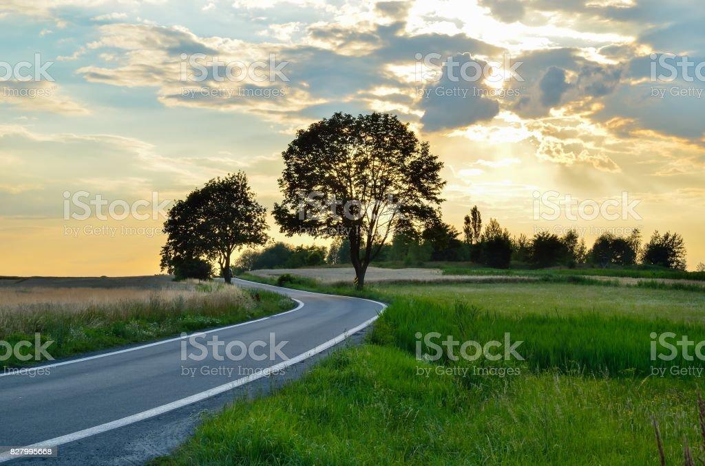 Summer evening landscape. stock photo