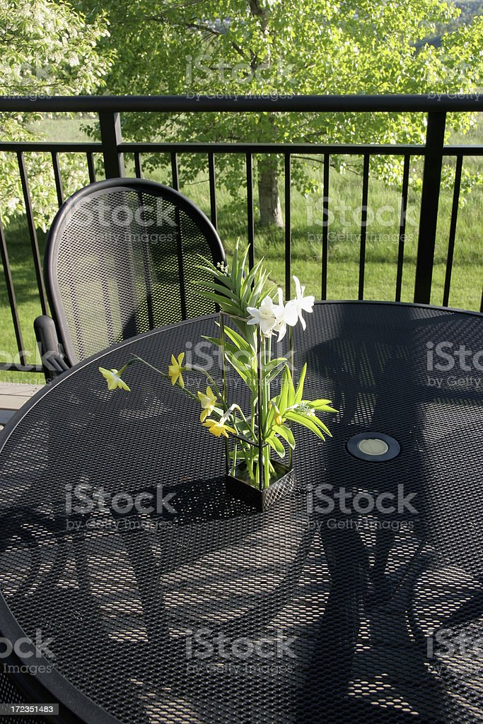 Summer Evening On The Back Deck royalty-free stock photo