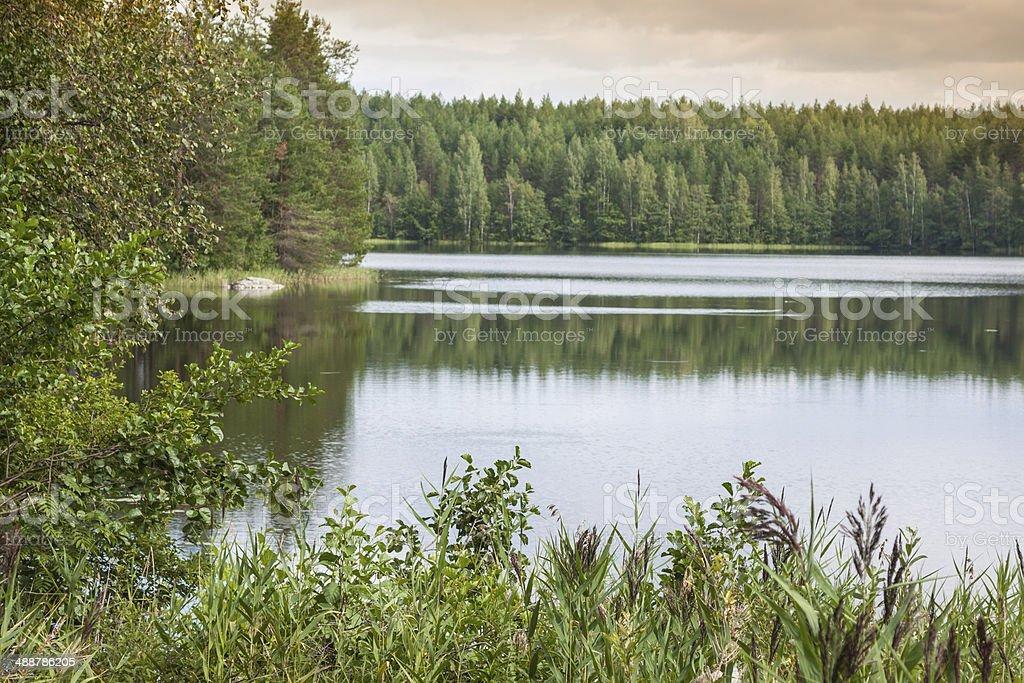 summer evening scene at Ruunaa hiking area, Finland stock photo